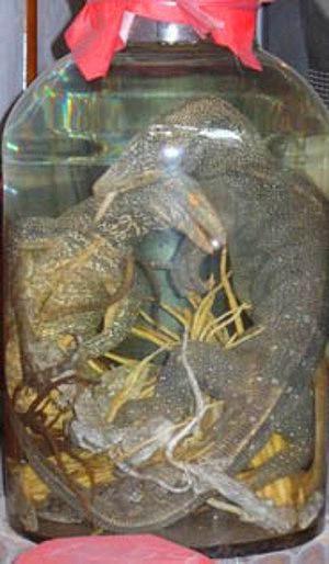 Ağaç Kertenkelesi Likörü:   Yine Uzakdoğu'dan fantastik bir içki. Bu içkiyi içen, kertenkelenin enerjisini kazanır inancı hakim.