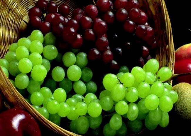 Üzüm  İdeal bir enerji kaynağı olan üzüm; özellikle bebeklerin gelişimi için çok faydalıdır. Sindirimi kolaylaştırır, kansızlığı giderir. Üzümde vücudumuzda en kolay parçalanan karbonhidratlar bulunduğundan yedikten çok kısa bir süre sonra yüksek enerji sağlar. Ayrıca antioksidan etkisi vardır.