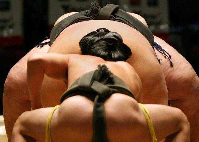 Neden sumo güreşçileri şişman?  Ne kadar şişman olurlarsa rakiplerinin onları ringden dışarıya atması o kadar zorlaşır. En ağır sumocu 267 kiloydu ve hiç yenilmedi.