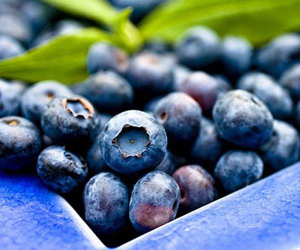 Yaban mersini: C vitamini bombası yabanmersini aynı zamanda çok güçlü bir antioksidan. Ona koyu rengini veren madde serbest radikalleri yok ederek, toksinlerin dışarıya atılmasını kolaylaştırıyor. Yabanmersini yağ hücrelerinin çözülmesine de yardımcı oluyor.