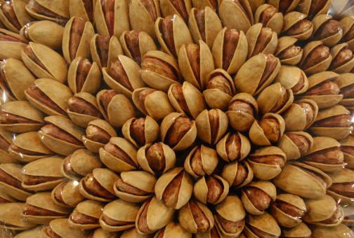 Antepfıstığı: Göğsü yumuşatır, idrar söktürücüdür, genel zayıflık ve bitkinliğe faydalıdır, yaprakları kaynatılıp içilirse kolesterolü düşürür.