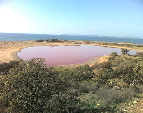Tuz Gölü, Bozcaada  Bozcaada'da bulunan biricik pembe gölümüz yüksek oranda tuz içerdiği için yöre halkı tarafından tuz gölü olarak anılıyor. Rengi bazen kırmızıya da çalan gölün etrafı antik sütunlar ve kalıntılarla dolu.