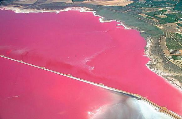 Salina de Torrevieja, İspanya  İspanyanın güney doğusunda bulunan gölün yarattığı mikroklima sayesinde bölge Avrupa'nın en sağlıklı yaşam alanı seçilmiş. Üstelik gölden elde edilen tuz da çok kaliteli.