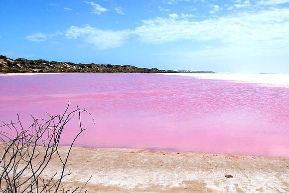 Pink Gölü, Avustralya  Batı Avustralya'da bulunan bu göle rengini sadece algler vermiyor. Pembe renkli Brine karidesleri de büyük katkıda bulunuyor. Göl aynı zamanda bir kuş cenneti.