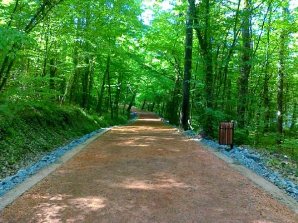Belgrat Ormanları   İstanbullu bisikletçilerin, hafta sonu kalabalığına rağmen vazgeçemedikleri parkurlar, Belgrat Ormanları'nda... Yaklaşık 1 saatlik bir sürüşle Ağaçlı Köyü'nden Karadeniz kıyılarına çıkabilirsin. Orman içinde Balıkçiftliği mevkiindeki 2,5 kilometrelik parkur da yarışlar için tercih ediliyor. Otoparktan Balıkçiftliği'ne gidip geri dönersen, parkuru 6 kilometreye uzatabilirsin. Ayvat Bendi çevresinde de bisikletle gezmek mümkün. Tabii ki orman içinde kendi rotanı kendin de çizebilirsiniz. Bisikletçilerin tek problemi hafta sonu artan trafik...
