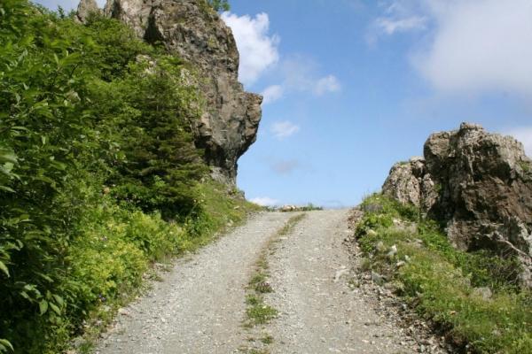 Artvin - Trabzon   Yeşil ile mavinin iç içe geçtiği Trabzon - Artvin Karayolu'nda yapacağın bisiklet turu, 230 kilometre... Bisikletçilerin üç etaba ayırdıkları parkurun ilk bölümü Trabzon - Rize arası ve 80 kilometre. İkinci bölüm Rize'den Hopa'ya uzanan 85 kilometrelik yol. Hopa - Artvin arası ise 65 kilometre. Trabzon - Rize - Hopa parkurunun bir yanı deniz, diğer tarafı da genellikle çay ekili bahçelerle kaplı... Rize ve Artvin'e gidildikçe yerleşim alanları iyice azalıyor ve yeşil hâkimiyeti artıyor. Yol boyunca, il ve ilçe merkezleri başta olmak üzere otel ve lokanta türü yerler mevcut.
