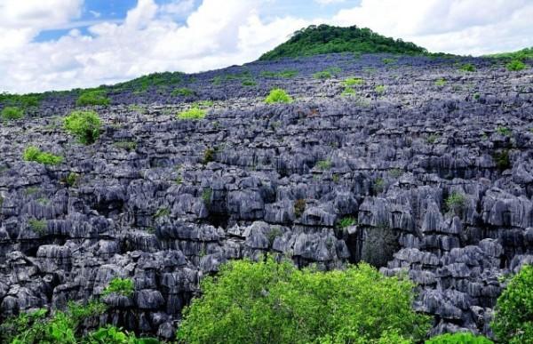 Tsingy, Ankarana Ulusal Parkı, Kuzey Madagaskar  Kireç taşı oyuklarından oluşmuş bir vadi.