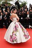 Cannes Film Festivali'nde şıklık yarışı - 12