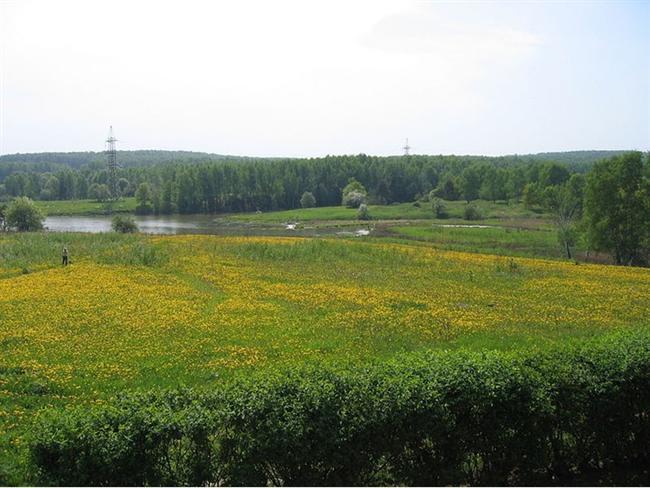 Moskova, Bitsevsky Park  18 km karelik bir alana yayılan park Moskova'nın en büyük doğal parklarından biri. Park 500′den fazla bitki türüne ev sahipliği yapıyor. 19. yy'da parkta 33 farklı çeşit memeli ve 78 farklı çeşit kuş türü yaşamaktaydı. Bir de parkın kötü bir geçmişi bulunuyor. 2001-2006 yıllarında seri katil Alexander Pichushkin bu parkı mesken tutmuş ve işlediği 60 cinayetin 59′u bu parkta gerçekleşmişti.