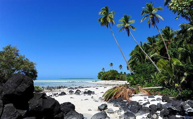 Cook Adaları, Polonezya