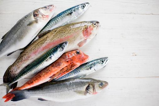 Balık  Haftada iki ya da üç kez balık tüketmek düzenli olarak anti-aging krem kullanmak ile eşdeğer... Özellikle somon içerisinde yer alan omega-3 kızarıklık, alerji ve kırışıklıkların oluşumunu yavaşlatmakta oldukça etkili. Hatta konserve ton balığı dahi cilt sağlığı açısından çok faydalı. Selenyum ise cildin elastikiyetini koruyor.