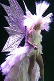 Lady Gaga ve çılgın kostümleri! - 21