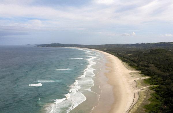 Tallow kumsalı - Avusturalya