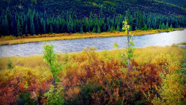 Alaska-ABD