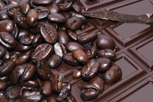 -Çikolatanın köpekleri öldürdüğü doğrudur. Onların kalbine ve sinir sistemine zarar verir. Yarım kilo kadar çikolata küçük bir köpeği öldürebilir.
