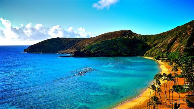 -Hawaii alfabesinde sadece 12 harf bulunmaktadır.