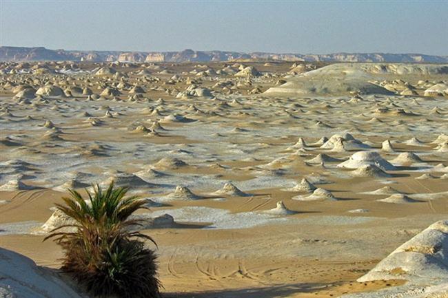 """Beyaz Çöl, Mısır  """"Sahara El Beyda"""" olarak bilinen Mısır'da bulunan Beyaz Çöl, ismini sarı kumlu çöllere kıyasla sahip olduğu beyaz kumlardan alıyor. Çöldeki devasa kayaları da güçlü fırtınalar oluşturmuş."""