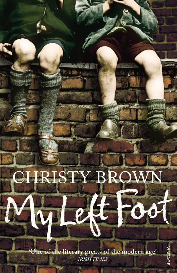 My Left Foot - Sol Ayağım  1989 yapımı sinema filmidir. Doğuştan beyin felçli doğduğu için sadece sol ayağını kullanabilen İrlandalı yazar Christy Brown'un aynı adı taşıyan kitabından uyarlanmış gerçek bir yaşam öyküsüdür. Filmde Christy Brown'u canlandıran Daniel Day-Lewis 1989 yılında, bu filmdeki performansıyla en iyi erkek oyuncu dalında Oscar kazanmıştır. Brenda Fricker ise bu filmdeki performansıyla en iyi yardımcı kadın oyuncu Oscar'ını kazanmıştır. Ayrıca film en iyi film, en iyi yönetmen ve en iyi senaryo dalında da Oscar'a aday gösterilmiştir.