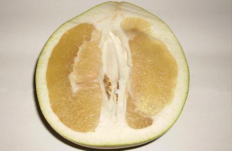 Pomelo  Tadı ve görünüşü itibariyle greyfurta benzer. Yaşlanma karşıtı, antioksidan ve C vitamini deposudur; mideye ve kalbe iyi gelir. Hesperidin isimli bir glikozit içerir. Bu madde P vitamini etkisi göstererek kılcal damarları kuvvetlendirir.