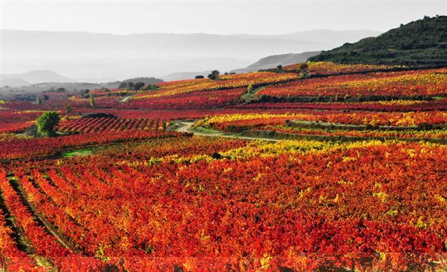 La Rioja-İspanya
