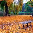 Sonbahar Mevsiminin En Güzel Yaşandığı 30 Yer - 23