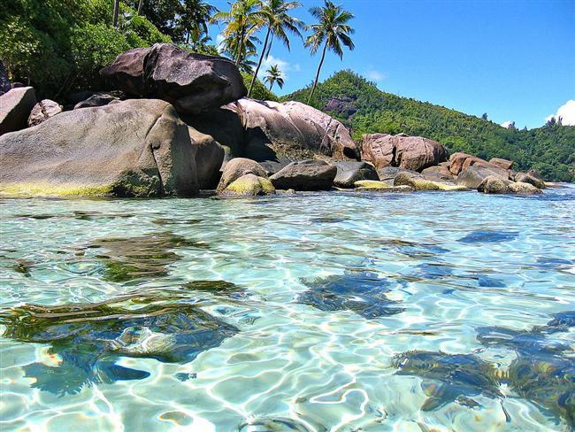 Seyşeller  2771 km²'lik ülkede 81 bin kişi yaşıyor. Hint Okyanusu adalar grubunun bir parçası olan devlet, 1976 yılında İngiltere'den ayrılarak bağımsızlığını ilan etti.