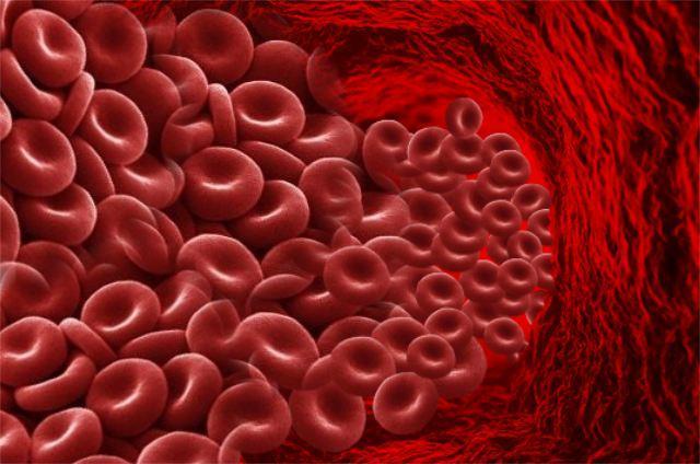 10. Daha fazla kan dolaşımı ve daha sağlıklı bir sinir sistemi  Sıcak su içmenin bir başka önemli faydası ise kaslarınızın ve sinir sisteminizin düzgün çalışması için önemli olan kan dolaşımını arttırmasıdır. Ayrıca etrafındaki yağ birikintilerini parçalayarak sinir sisteminizin daha sağlıklı işlemesine yardımcı olur.
