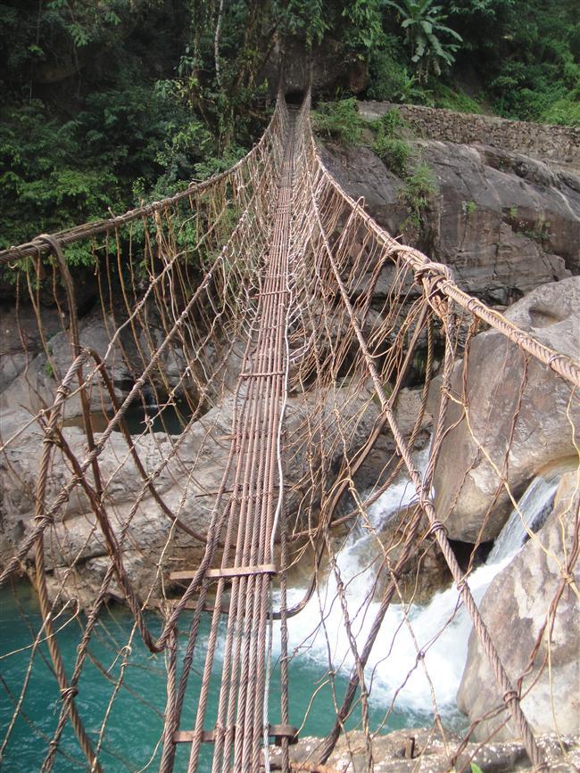 Yüzyıllar boyunca, bölge insanları, kauçuk ağaçlarının işlenebilir köklerini kullanarak bölgede bulunan nehirler üzerinde doğal köprüler 'yetiştirdiler.'