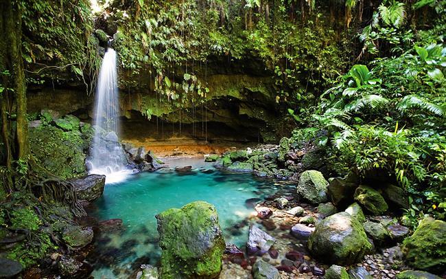 Dominica-Karayipler