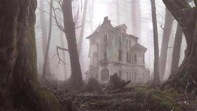 Orman içinde terk edilmiş malikane