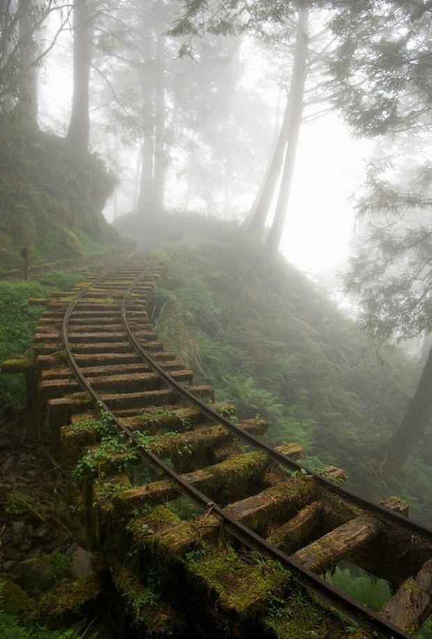 Terk edilmiş maden demiryolu, Tayvan