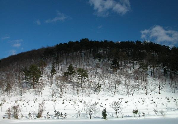 2.Bunda kapalı ve soğuk havanın, gittikçe soyunan ağaçların, yuvalarına çekilen hayvanların payı elbette büyük…
