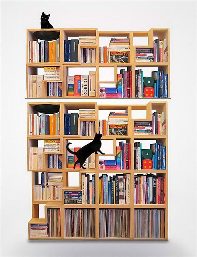 12. Kedi Dostu Raflı Dolap