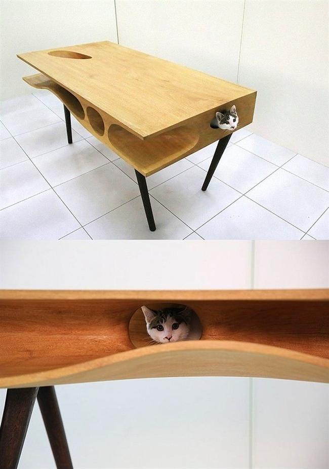 9. Kedi Masası - Kediler için oyun masası, sizin için normal masa