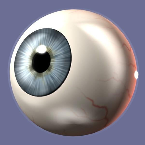 5. Ölçüleri  Ortalama bir göz küresi 2,25 cm çapında ve 7 gr ağırlığındadır.