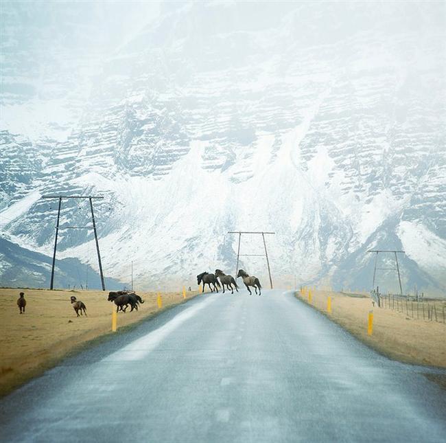 13. Höfn, İzlanda  Fotoğraf: Andy Lee
