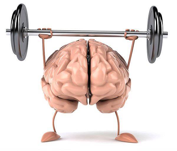 13. İnsan beyni ortalama olarak 1.5 kilo ağırlığındadır ve beden ağırlığının %2-3'lük kısmını oluşturur. Fakat vücut oksijeninin %20'sini ve glikozunun %15-20'sini tüketir.