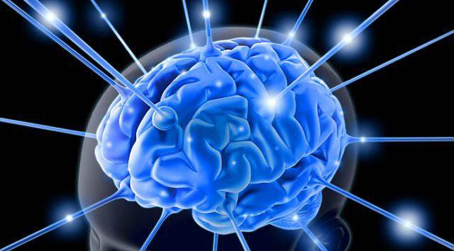 İnsan Beyni Hakkında Bilmediğiniz 43 Gerçek - 14