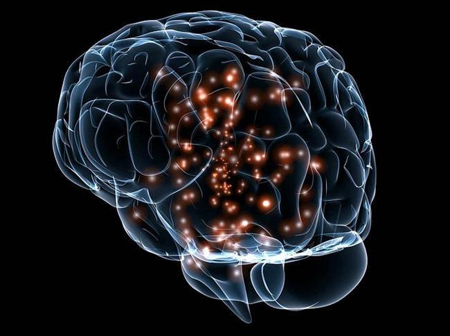 İnsan Beyni Hakkında Bilmediğiniz 43 Gerçek - 16