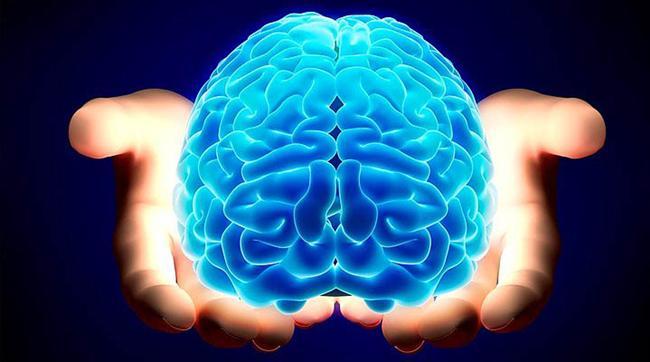 İnsan Beyni Hakkında Bilmediğiniz 43 Gerçek - 24