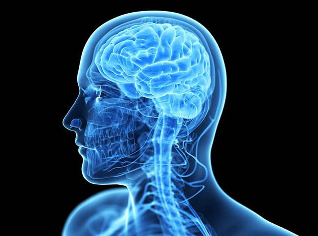 29. Probiyotik bakteriler beyninizin nörokimyasını değiştirmenize yardım edebilir.