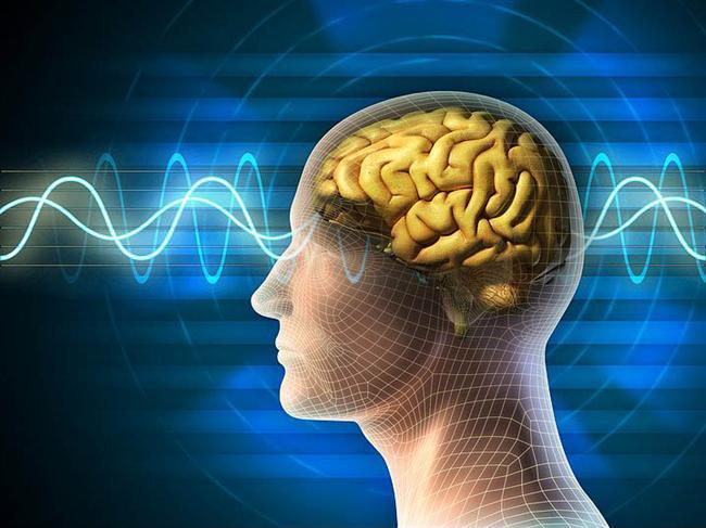 İnsan Beyni Hakkında Bilmediğiniz 43 Gerçek - 33