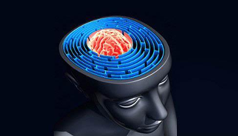 37. Bir müzik enstrümanı çalmak, beyninizin görsel, işitsel ve motor kortekslerinin aynı anda çalışmasına neden oluyor. Bir enstrüman çalarken sol lobun dilsel ve matematiksel yeteneklerini, sağ lobun yaratıcılık yetenekleriyle buluştururuz.