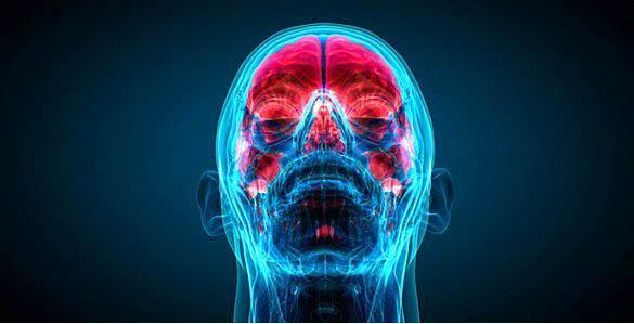 İnsan Beyni Hakkında Bilmediğiniz 43 Gerçek - 40