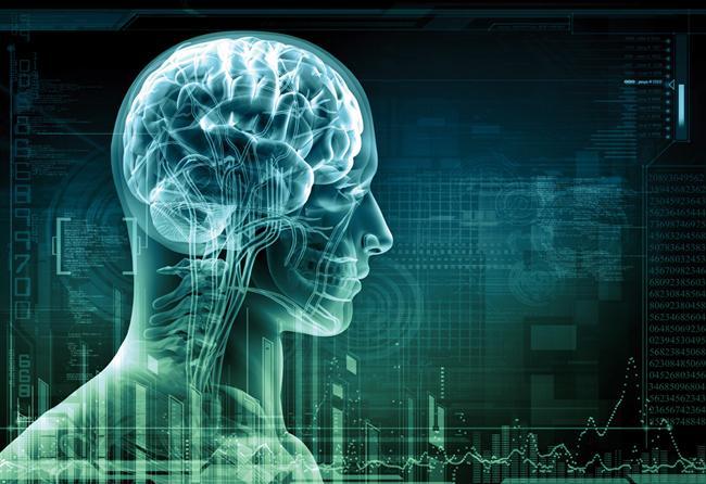 26. Şehir efsanesine inanmayın: İnsanlar beyinlerinin neredeyse %100'ünü kullanıyor. Beynimizin küçük bir kısmını kullandığımız efsanesine dayanarak yapılmış filmler: Üzgünüm ama bilimin söylediği gerçek bu.