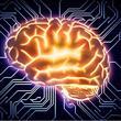 İnsan Beyni Hakkında Bilmediğiniz 43 Gerçek - 42
