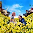 Kadınların Sevdiği 22 Film - 10