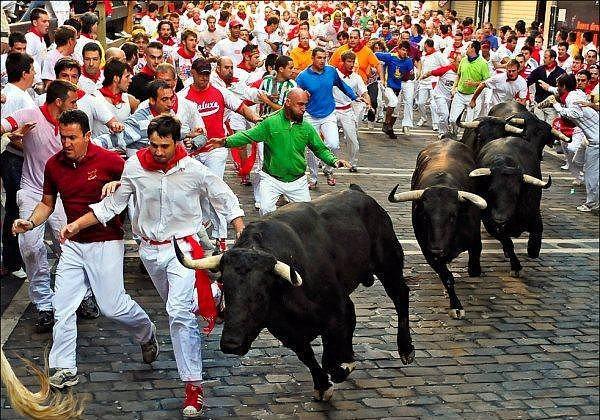 7. San Fermin Festivali - Pamplona  Çılgına dönmüş boğaların sokaklarda koşturmasıyla ün salmış olan San Fermin Festivali en eski festivallerden bir tanesi. İlk olarak 14. Yüzyıl'da gerçekleştirilen bu festival 15. Yüzyıl'da İspanya'nın Pamplona kentine taşındı ve hala burada gerçekleşmekte. Her yıl 6-14 Temmuz tarihlerinde ziyaretçilerini ağırlayan bu festivale 1 milyondan fazla insan katılıyor.