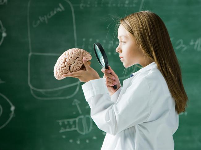 13.Evde yaşanan şiddetli kavgaların küçük çocukların beynine yaptığı etkiyle, çatışmaların askerlerin beynine yaptığı etki aynıdır.