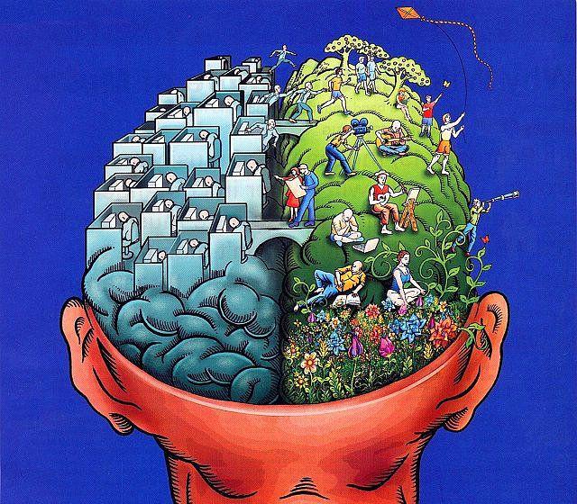 10.Sağ beyin ve sol beyin, sanılanın aksine ayrı değil beraber çalışır.